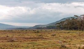 Valle de Kenia Fotografía de archivo libre de regalías