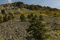 Valle de la Barranca, valle de Barranca imágenes de archivo libres de regalías