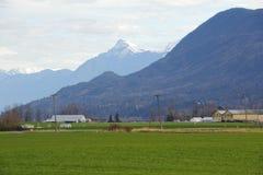 Valle de la costa oeste en invierno Fotografía de archivo