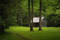 Valle de la ensenada de Cades de la cabina de los colonos en Tennessee Smoky Mountains imagen de archivo