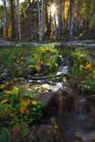 Valle de la esperanza en otoño Foto de archivo