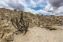 Valle de la luna i Bolivia royaltyfri fotografi