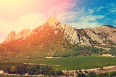 Valle de la montaña con el viñedo Imagen de archivo