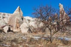 Valle de la montaña con la hierba seca y los árboles Foto de archivo libre de regalías