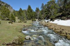 Valle de la montaña con un torrente glacial Foto de archivo libre de regalías