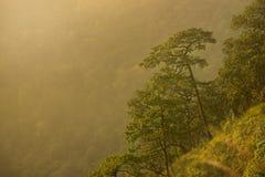 Valle de la montaña durante puesta del sol Imagenes de archivo