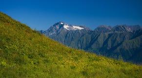 Valle de la montaña en día de verano Fotografía de archivo libre de regalías