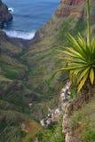 Valle de la selva en Cabo Verde Imagen de archivo libre de regalías