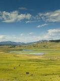 Valle de Lamar en Yellowstone Imagen de archivo