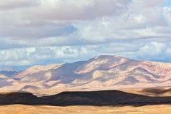Valle de las rosas de Marruecos Imagen de archivo libre de regalías