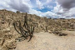 Valle de los angeles Luna w Boliwia fotografia royalty free