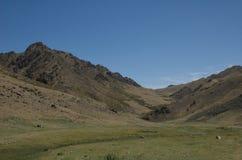 Valle de los buitres en el desierto de Gobi Imágenes de archivo libres de regalías