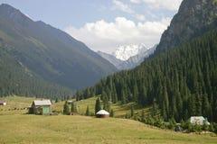 Vallée de montagne. Image libre de droits