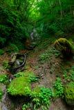 Valle de Nishizawa en Yamanashi, Japón Fotografía de archivo libre de regalías