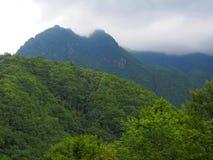 Valle de Nishizawa en Yamanashi, Japón Foto de archivo libre de regalías