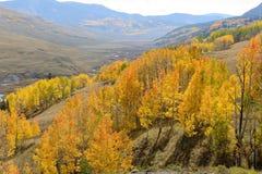 Valle de oro Fotografía de archivo libre de regalías