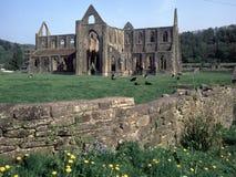 Valle de País de Gales, horqueta, abadía de Tintern Fotografía de archivo