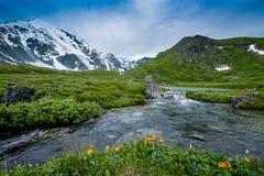 Valle de siete lagos en Altai cerca de la montaña de Belukha y del lago Akkem Imagen de archivo libre de regalías