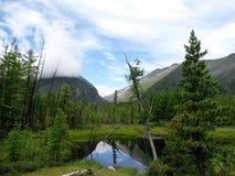 Valle de Tunka Fotografía de archivo libre de regalías