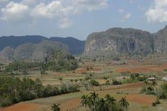 Valle de Viñales immagini stock