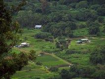 Valle de Waipio Imagen de archivo libre de regalías