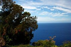 Valle 3 de Waipio Fotografía de archivo libre de regalías