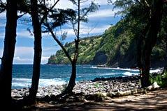 Valle de Waipio Foto de archivo libre de regalías