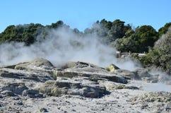 Valle de Whakarewarewa de géiseres en nuevo Zelandii Parque de Geotermalny Foto de archivo