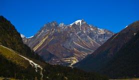 Valle de Yumthang Imagen de archivo