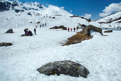 Valle de Yumthang Fotos de archivo libres de regalías