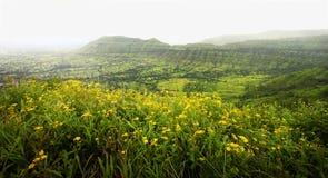 Valle dei fiori fotografie stock libere da diritti