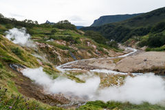 Valle dei geyser kamchatka fotografia stock libera da diritti