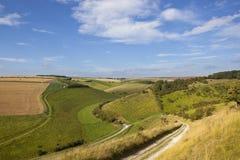 Valle dei wolds di Yorkshire Fotografia Stock