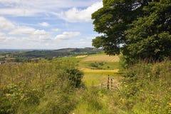 Valle dei wolds di Yorkshire nell'estate Fotografia Stock Libera da Diritti