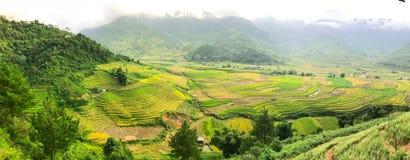 Valle del arroz fotos de archivo