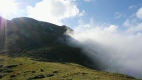 Valle del bosque Niebla de la mañana Las colinas verdes con los árboles metrajes