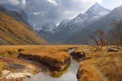 Valle del Cáucaso Fotos de archivo libres de regalías