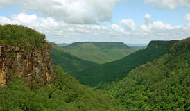 Valle del canguro, sud di NSW, Australia Immagine Stock