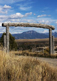 Valle del cigno Immagine Stock