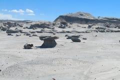 Valle del desierto de Ischigualasto Fotos de archivo libres de regalías