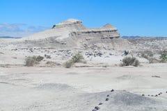 Valle del desierto de Ischigualasto Fotos de archivo