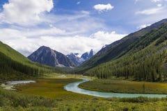 Valle del fiume della montagna Fotografia Stock
