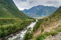Valle del fiume di Chulcha Repubblica di Altai La Russia Immagini Stock