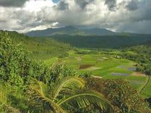 valle del Kauai di hanalei Immagini Stock