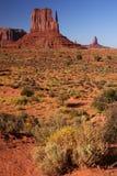 Valle del monumento Imagen de archivo libre de regalías