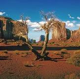 Valle del monumento, Arizona Fotografie Stock