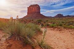 Valle del monumento, parco tribale navajo, paesaggio famoso del deserto, U.S.A. - primavera e yucche di fioritura fotografia stock