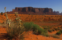 Valle del monumento, Utah, los E.E.U.U. Imagen de archivo