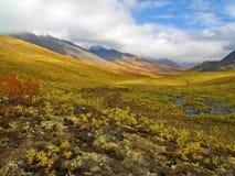 Valle del norte de Klondike Fotos de archivo libres de regalías
