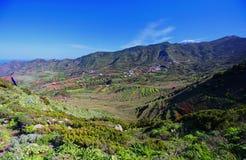 Valle del paesaggio Palmar Tenerife di EL Immagini Stock Libere da Diritti